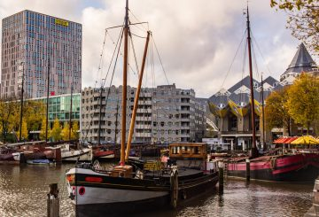 Take your Dutch to the next level in Rotterdam